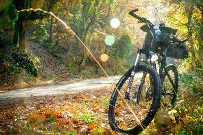 Mountainbiken und Radfahren im Mühlviertel - Hotel INNs HOLZ