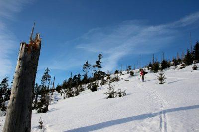 Skitour durch den verschneiten Böhmerwald - INNs HOLZ