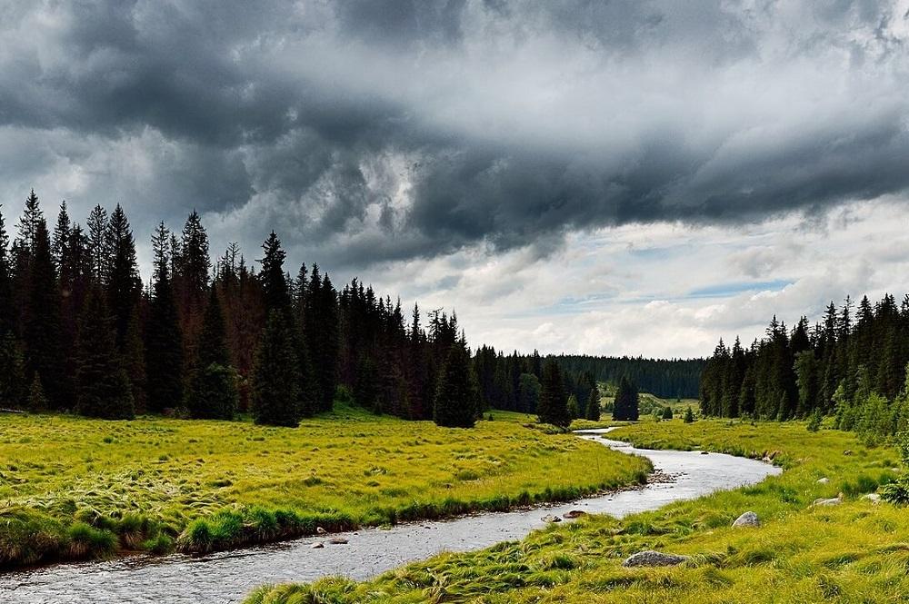 Urlaub im Böhmerwald - INNs HOLZ