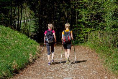 Nordic Walking ist ideal für Anfänger - INNs HOLZ